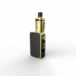 Gecko Gold 24K